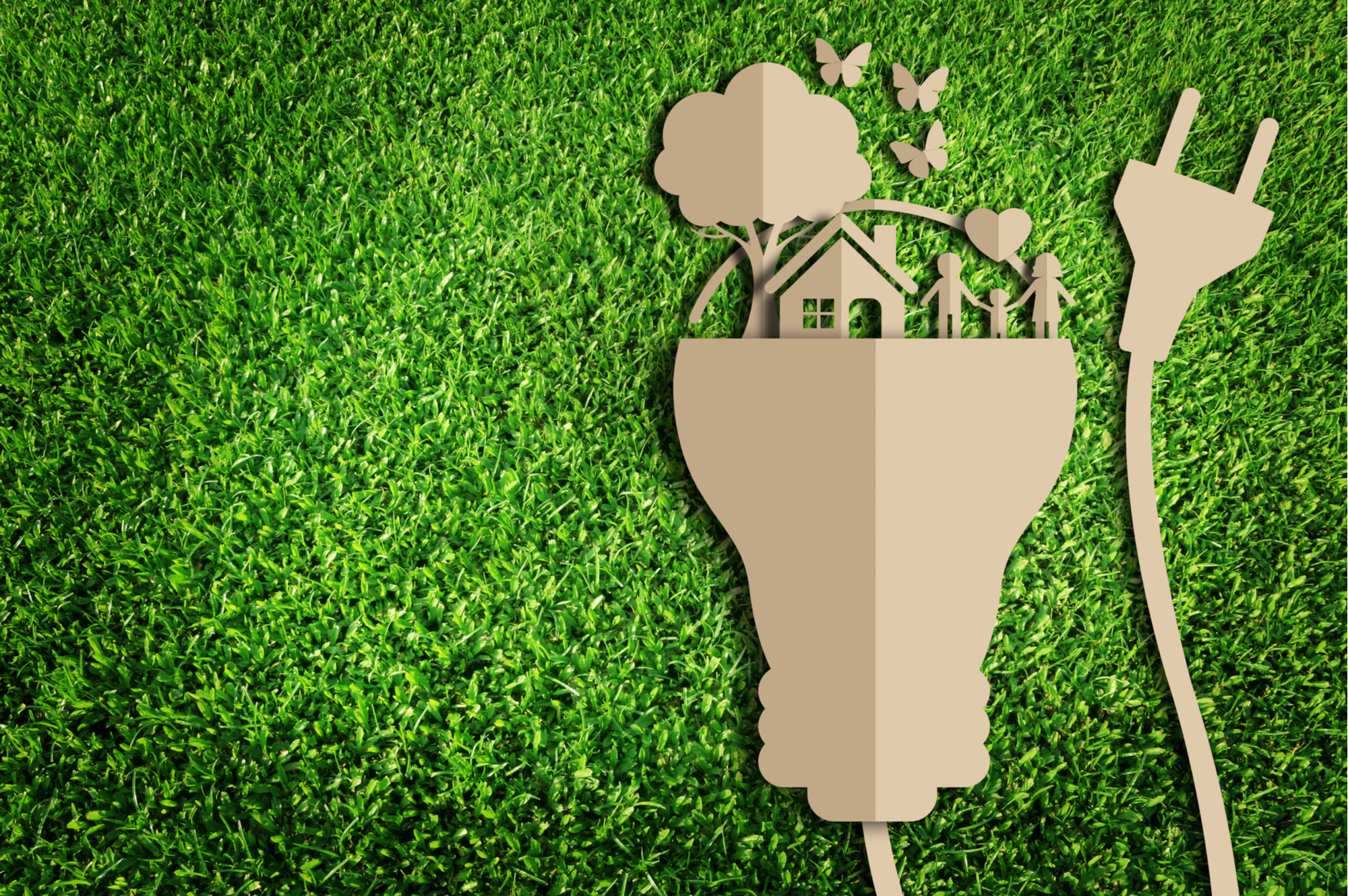 5 ways to make your house more eco-friendly